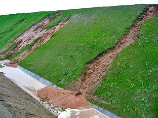 Hydrosiew skarp drogowych i ochrona przed erozją - kontrola erozji gleby za pomocą hydrosiewu.