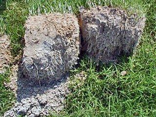 Ochrona przed erozją i retencja wody w glebie wykorzystująca mineralno-polimerowy absorbent - alternatywa hydrożelu