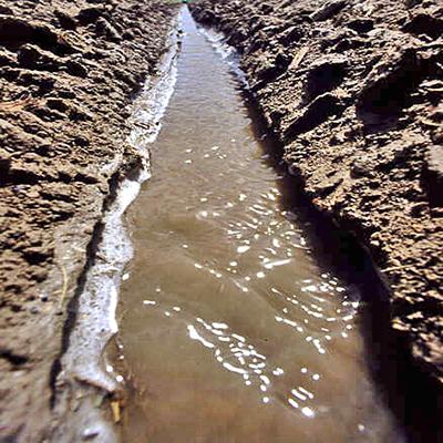 Brak kontroli erozji. Erozja występuje po opadach. Zerodowana gleba jako zawiesina spływa z wodą .