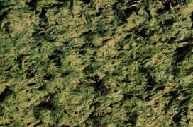 Hydrosiew / hydromulczowanie z aplikacją 2250 kg/ha - mulcz drzewny