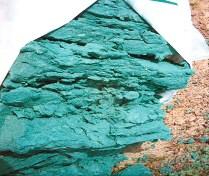 Barwiony mulcz celulozowy do hydrosiewu.